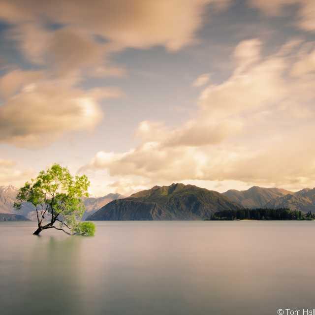 Autotour en Nouvelle Zélande - Wanaka