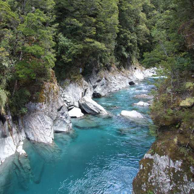 Autotour en Nouvelle Zélande - Haast