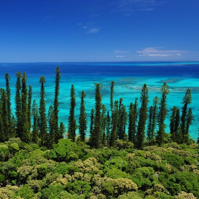 La Route du Pacifique -Nouvelle Calédonie - Ile des Pins