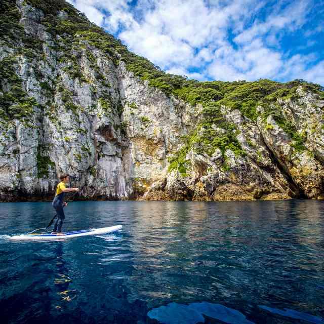 Voyage jeunes nouvelle zélande - baie des iles