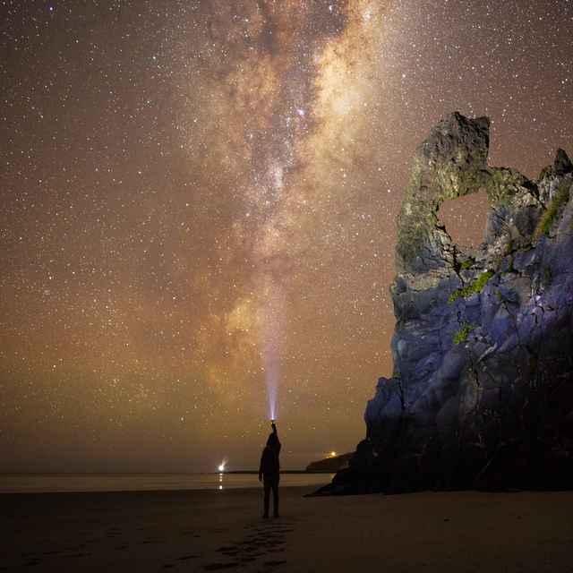 Lune de miel nouvelle zélande - Dunedin