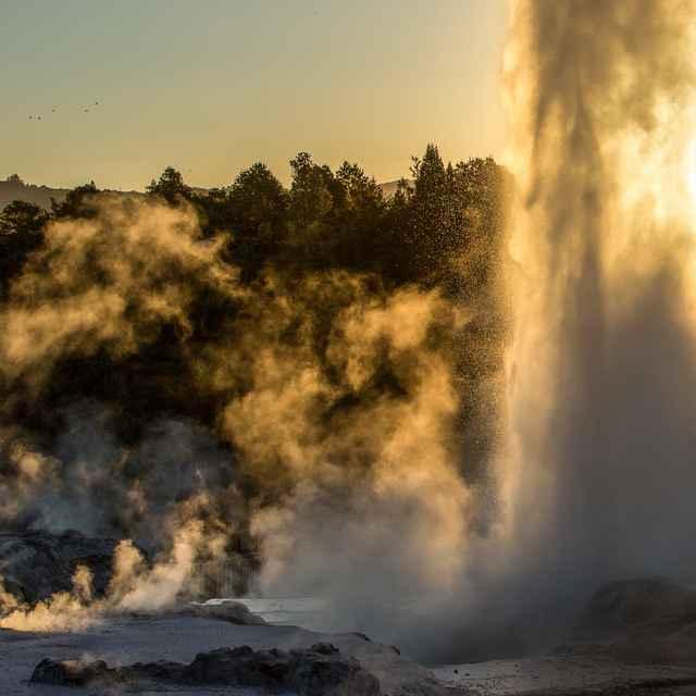 voyage jeunes nouvelle zélande - Rotorua, geyser