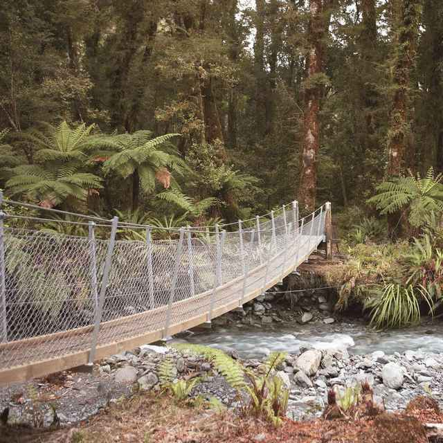 Randonnée en Nouvelle Zélande - Hollyofrd Track