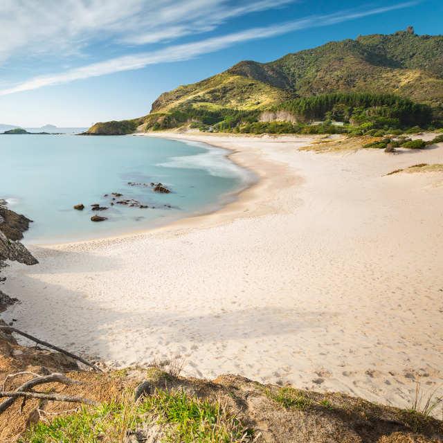 Autotour île du nord de Nouvelle-Zélande - Baie des Îles et Kauris