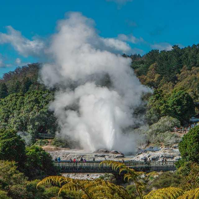 Voyage Ile du Nord de Nouvelle-Zélande - Rotorua
