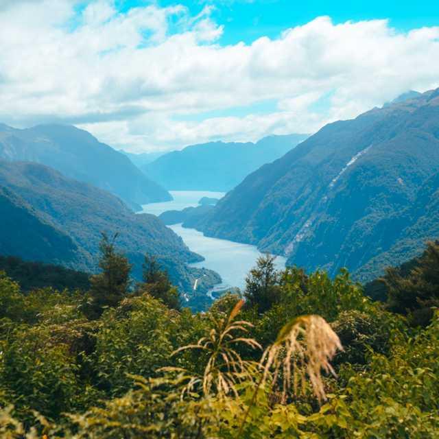 Voyage île du Sud de Nouvelle-Zélande - Doubtful Sound