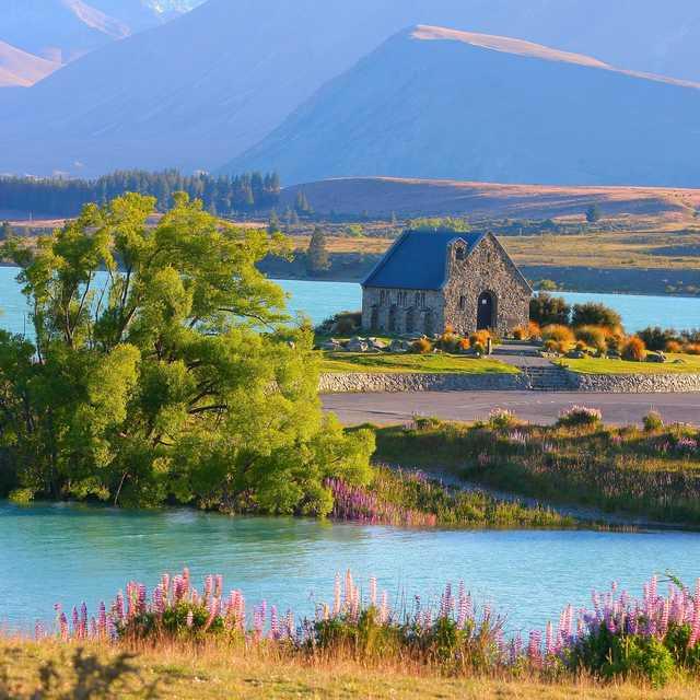 Voyage Ile du Sud de Nouvelle-Zélande - Lac Tekapo