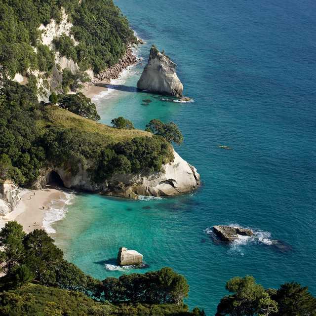 Nouvelle Zélande 970 Lonely Bay - Coromandel